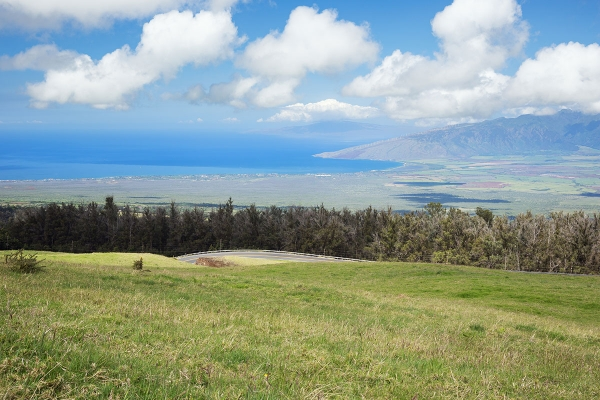 upcountry maui hawaii